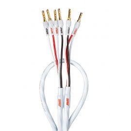 SUPRA RONDO 4X2.5 BLUE COMBICON (Bi-wire) - 4m